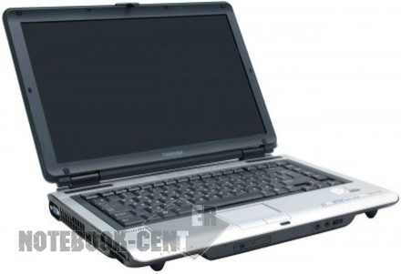Toshiba Satellite M100-221